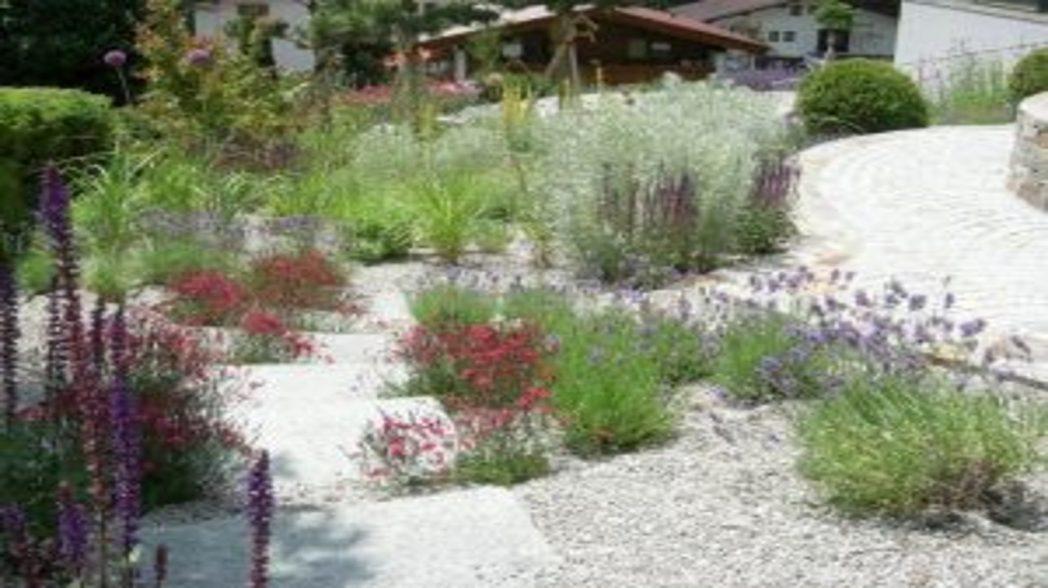 Hervorragend Ein Garten Entsteht