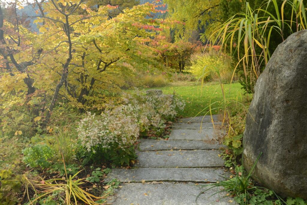 naturhaner Garten im Herbst