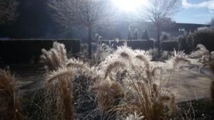 Garten im Winter Tirol