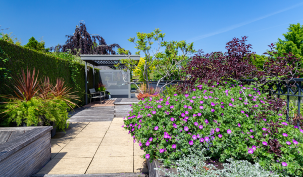 Ein Dachgarten mit Blumen und Hecke