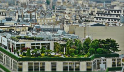 Ein Dachgarten